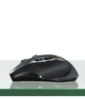 MX800 combo mouse