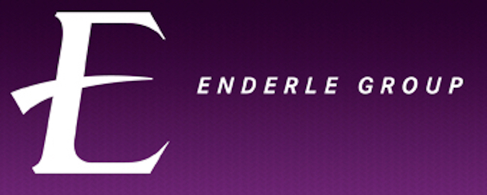 Enderle Group logo